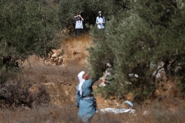 Israeli settlers watch as a Palestinian man picks olives near a Jewish settlement outpost near Ramallah in the Israeli-occupied West Bank, October 16, 2020 [Mohamad Torokman/Reuters]