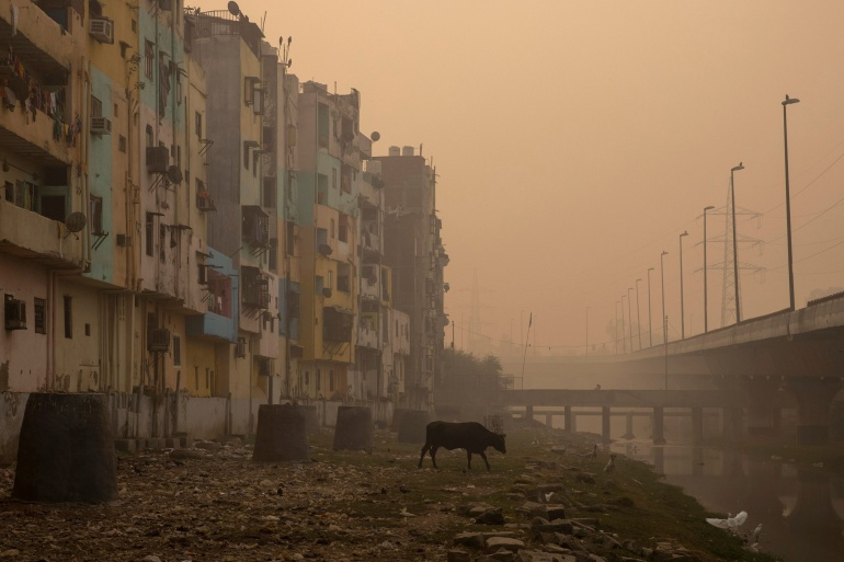 A residential area is seen shrouded in smog in New Delhi [File: Danish Siddiqui/Reuters]