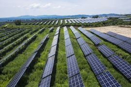 Longi Green Energy Technology, the world's biggest solar panel maker by market value, is one of the firms urging the Chinese government to remove restrictions on adding more production capacity [File: Qilai Shen/Bloomberg]