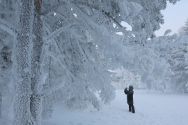 A woman takes pictures of trees covered with hoarfrost and snow in a forest on the bank of the Yenisei River, with the air temperature at about minus 32 degrees Celsius (minus 25.6 degrees Fahrenheit), near the Siberian city of Krasnoyarsk, Russia December 6, 2018. REUTERS/Ilya Naymushin