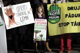 A Romanian girl stands between environmental activists marching against illegal and destructive deforestation in Bucharest on November 3, 2019. Her placards read: 'CUT THE GREED, KEEP THE FOREST!' [File: EPA/Robert Ghement]