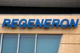 Regeneron has engaged in discussions with the United States Food and Drug Administration almost every day since it submitted its application for emergency use of the COVID-19 drug in October [File: Brendan McDermid/Reuters]