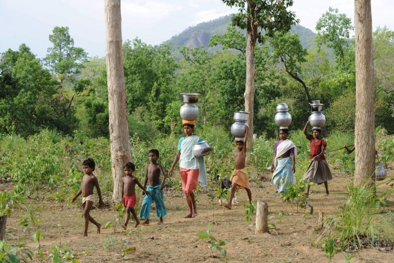 Women and children of the Gond tribe from Chhattisgarh state walk to collect drinking water [File: Noah Seelam/AFP]