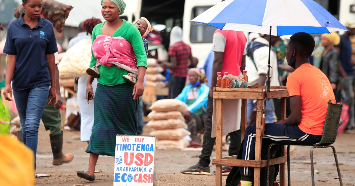 In Zimbabwe, some businesses struggle, others adapt and thrive