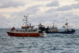 The Brexit deal has angered one of the sectors the government stressed it would protect: fishing [File: Pascal Rossignol/Reuters]