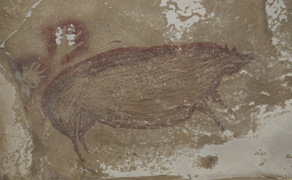 Warty pig: World's oldest-known cave portray present in Indonesia