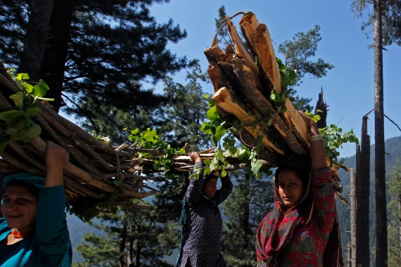 Mostly concentrated in or near forests, Kashmir has a tribal population of about 1.1 million, according to the latest census carried out in 2011 [File: Fayaz Kabli/Reuters]
