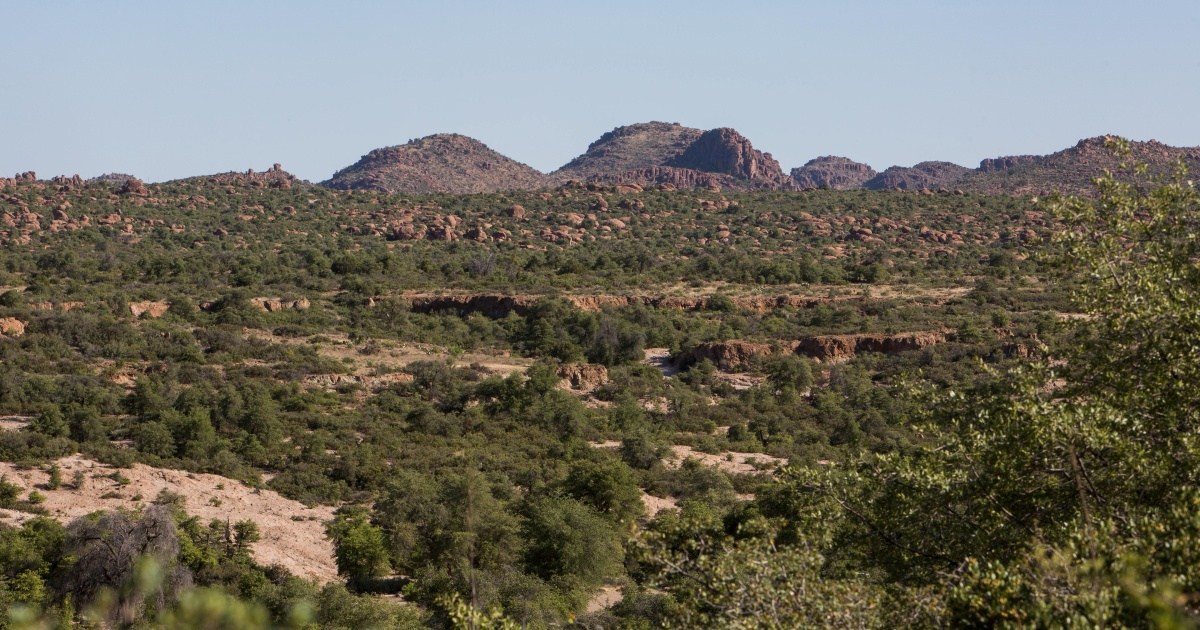 'Stop this destructive giveaway': Fight against US mine picks up | Environment News