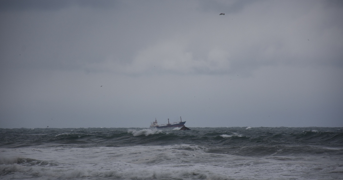 Several dead as freight ship sinks off Turkey's Black Sea coast thumbnail