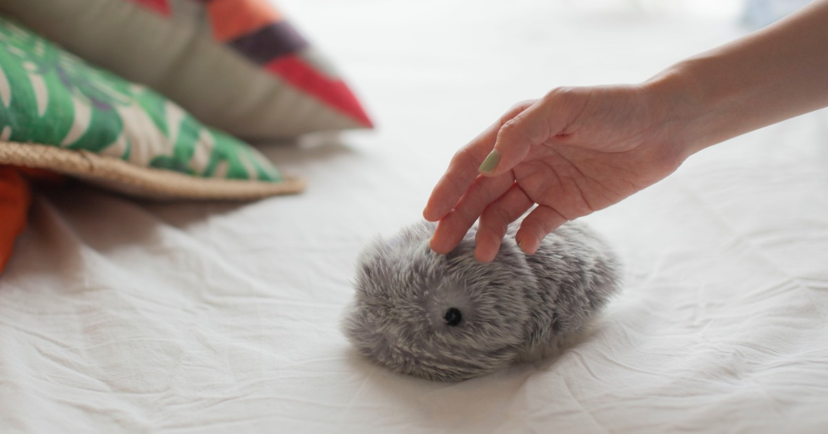 Robots rising: Firms debut fuzzy pets, household helpers at CES thumbnail