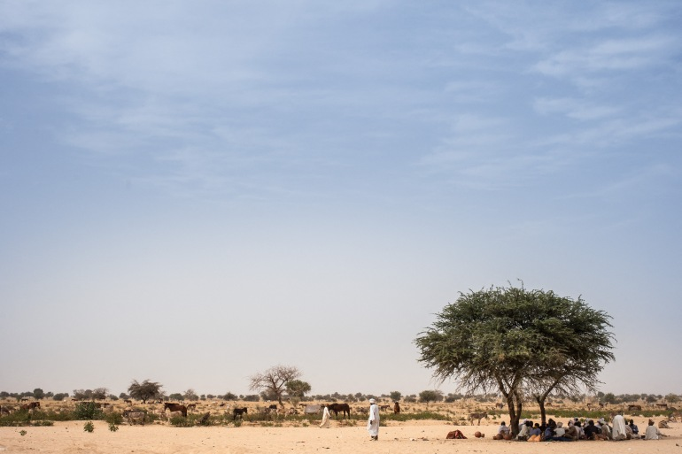 Farmers find a shelter on the road between Adre and Farchana in the region of Ouaddai [File: Amaury Hauchard/AFP]