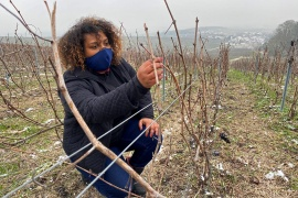 Marie-Ines Romelle, founder and owner of Marie Cesaire Champagne, in her vineyard in Reims, France, February 9, 2021 [Yiming Woo/Reuters]