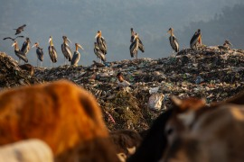 Imradul Ali looks for recyclable material at a landfill on the outskirts of Gauhati. [Anupam Nath/AP Photo]