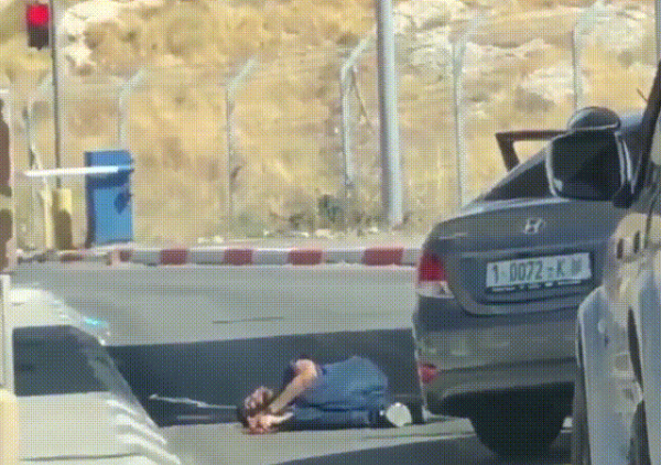 www.aljazeera.com: Killing of Palestinian man by Israel an 'extrajudicial execution'