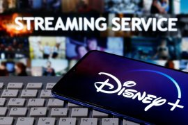 Investors have welcomed Disney's early success in the streaming video wars dominated by Netflix [File: Dado Ruvic/Reuters]