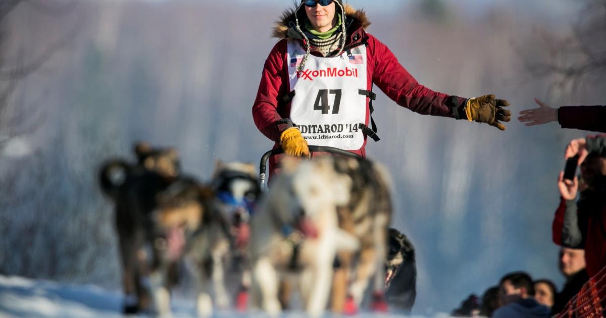 COVID precautions alter Alaska's Iditarod dog-sledge race course thumbnail