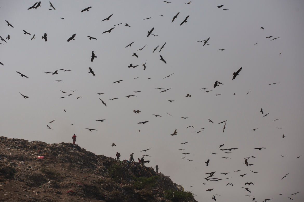 Birds hover as rubbish pickers look for recyclable waste at Bhalswa landfill on the outskirts of New Delhi. Every day, more than 2,300 tonnes of garbage is dumped at Bhalswa. [Altaf Qadri/AP Photo]