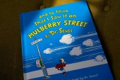 The book And to Think That I Saw It on Mulberry Street, by Dr Seuss, will no longer be published due to insensitive and racist imagery [File: Steven Senne/AP Photo]