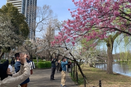 Amid the continuing COVID pandemic, Japanese are being encouraged to keep moving when they view the cherry blossoms this year [Shane Gibbons/Al Jazeera]