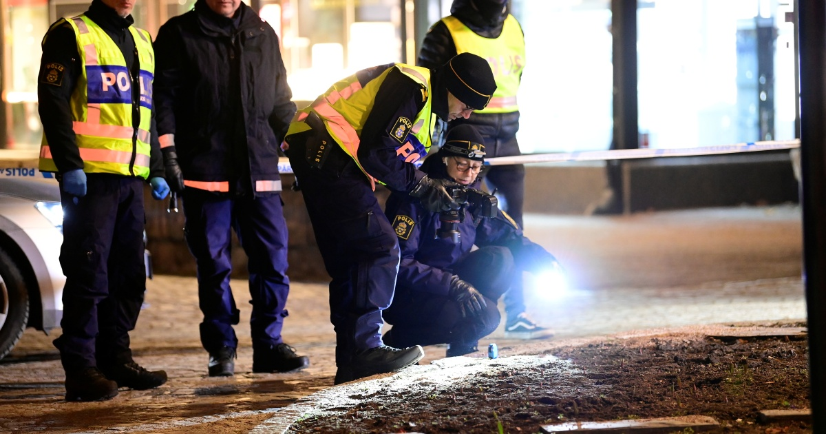 Man injures 8 with axe in Sweden earlier than being shot, arrested