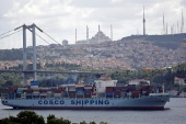 FILE PHOTO: The Cosco Shipping Danube, a container ship of the China Ocean Shipping Company (COSCO), sails in the Bosphorus, on its way to the Mediterranean Sea, in Istanbul, Turkey August 11, 2018. REUTERS/Murad Sezer/File Photo