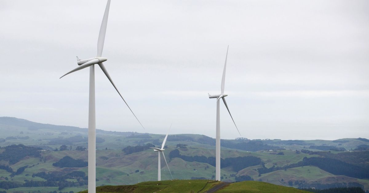 In world first, New Zealand mulls climate law for financial firms