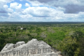 Calakmul archaeological site is located in the heart of one of the largest tropical forests. The nearby town of Xpujil is on the blueprint for the Tren Maya that will connect different locations in Mexico's touristic Yucatan Peninsula [Sally Jensen/Al Jazeera]