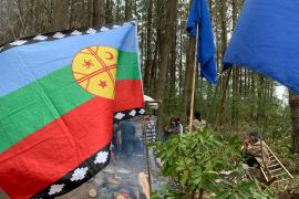 A journey through Chile's conflict with Mapuche rebel groups