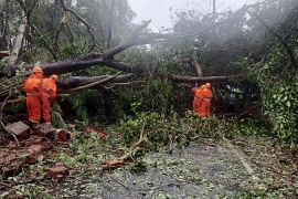 The National Disaster Response Force personnel clearing fallen trees from a road following severe cyclonic storm 'Tauktae' at Margao in Goa [National Disaster Response Force/AFP]