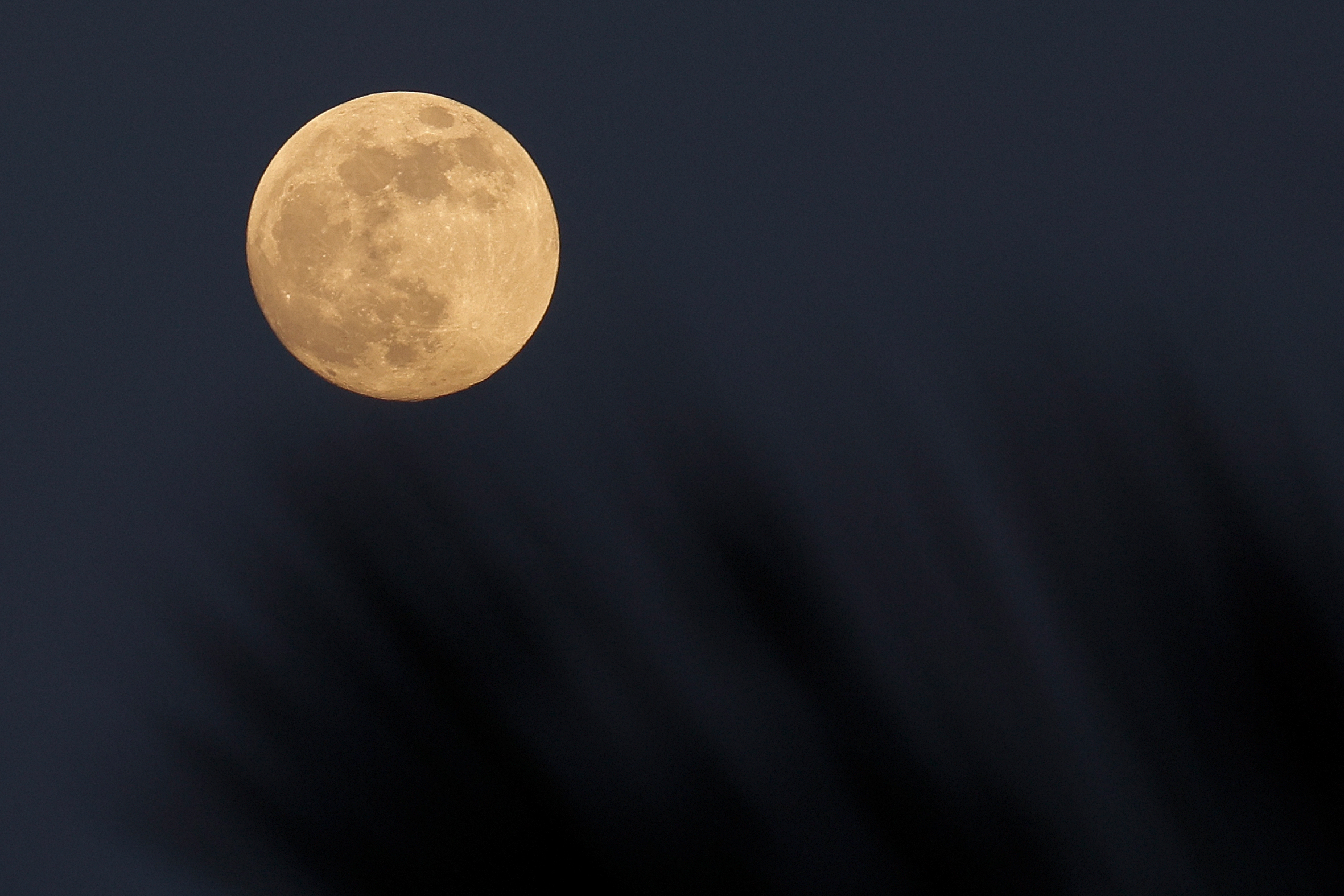 How to watch the the 'super flower blood moon' eclipse from Japan