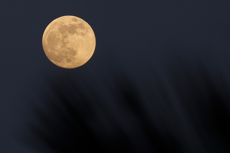 A photo taken on May 25, 2021 shows a Super Moon rising behind the trees over the Mediterranean Sea. People in the Asia Pacific and the Americas will be able to observe a Super Flower Blood Moon on Wednesday [David Gannon/AFP]
