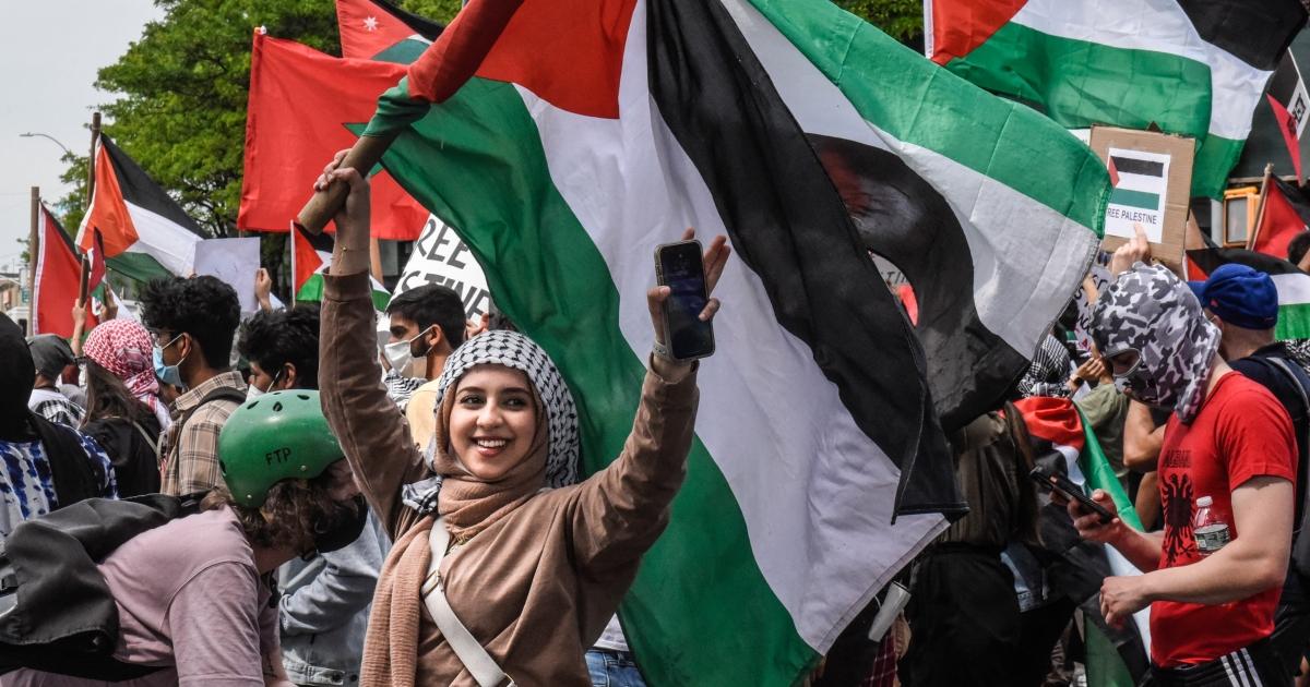 Generation Z will free Palestine
