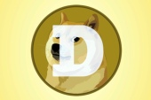 Amid a surge in cryptocurrencies more broadly, Dogecoin now has a market capitalisation of more than $78bn, according to CoinMarketCap, but critics warn it could turn out to be a speculative bubble [File: Richard Drew/AP Photo]