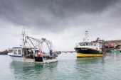 Fishing rights proved one of the most divisive issues during UK-EU negotiations on a post-Brexit trade deal [Gary Grimshaw/Balliwick Express via AP]