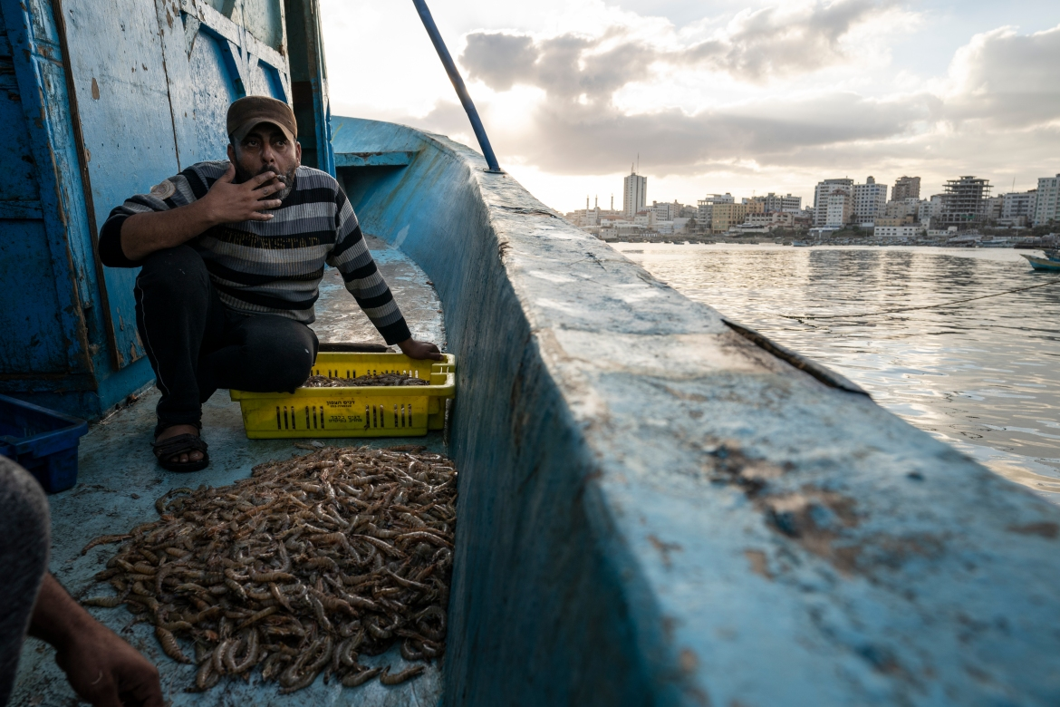 About 80 percent of Gaza's population is dependent on food aid, which renders fish an unaffordable luxury for many. [John Minchillo/AP Photo]