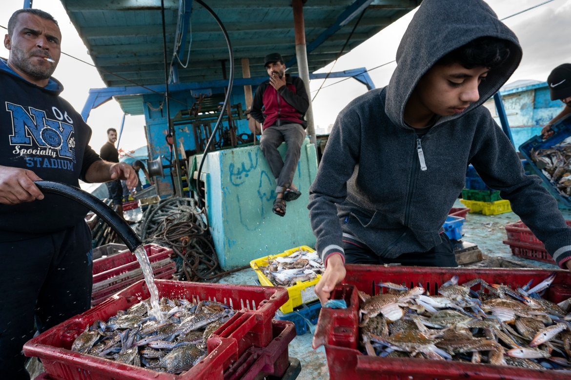 Fishermen unload their catch before sorting and delivering fish to the market after a limited number of boats were allowed to return to sea in Gaza City on Tuesday. [John Minchillo/AP Photo]