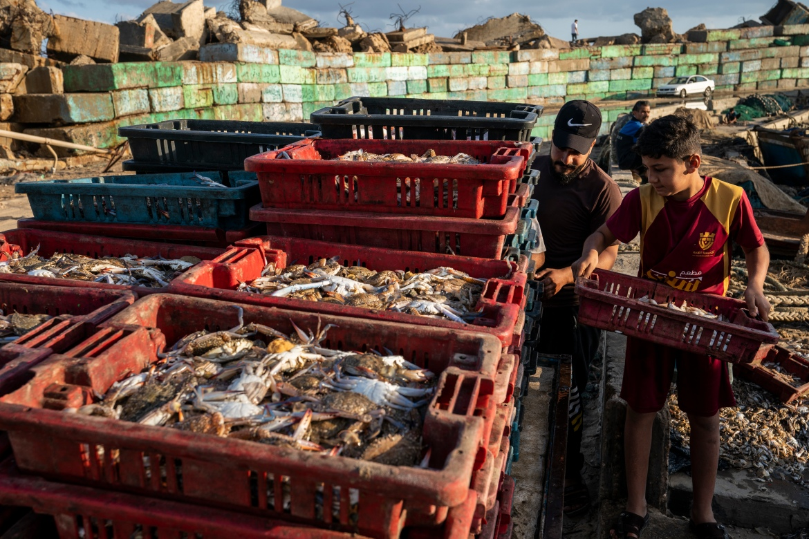 A young fisherman helps load a horse-drawn cart before delivering the haul to market. [John Minchillo/AP Photo]