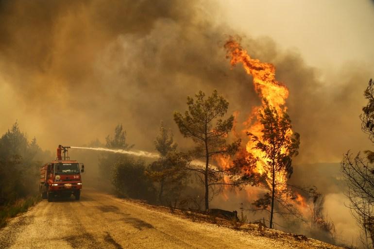 Four killed as wildfires sweep Turkey, force evacuations | Environment News  | Al Jazeera