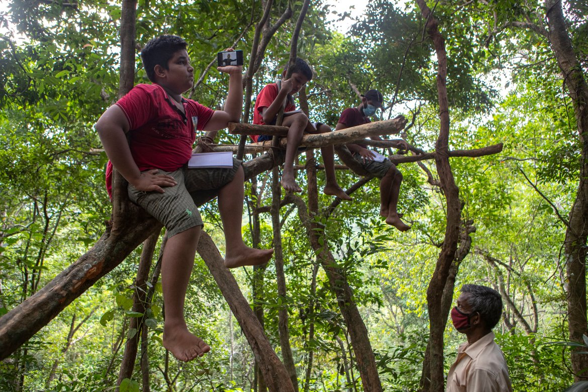 Sri Lankan children sit on tree branches as they access their online lessons from a forest reserve in their village in Bibila, Sri Lanka. [Eranga Jayawardena/AP Photo]