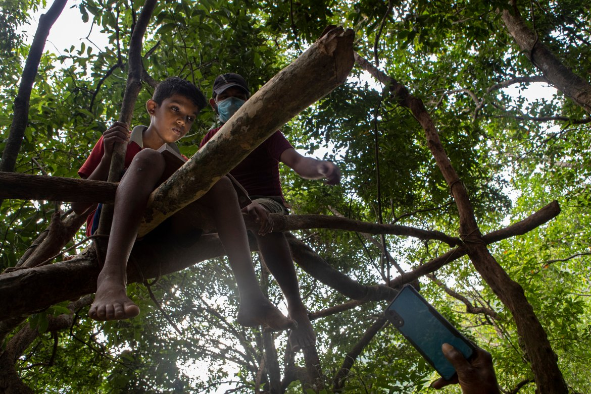 Sri Lankan children sit on tree branches as they access their online lessons. Authorities say they make every effort to provide children with access to education. [Eranga Jayawardena/AP Photo]
