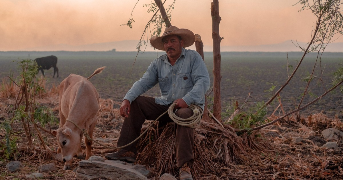 Photo of 'Doomed to stay': The dying villages of Mexico's Lake Cuitzeo | Climate