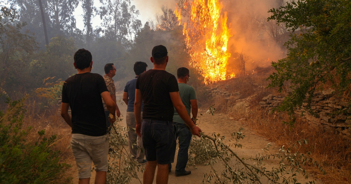 In Turkey, wildfires leave behind charred homes and ashes thumbnail