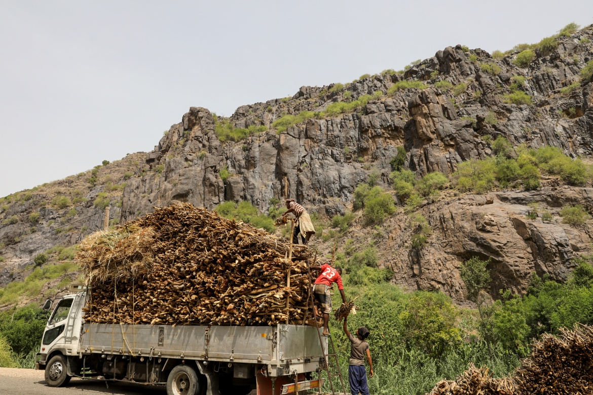 Lumberjacks load bundles of firewood onto a truck in the Khamis Banisaad district. The fuel shortages due to a coalition blockade on Houthi-held areas, including limiting access to the main port of Hodeidah, have led businesses and families to swap diesel and gas for firewood. [Khaled Abdullah/Reuters]