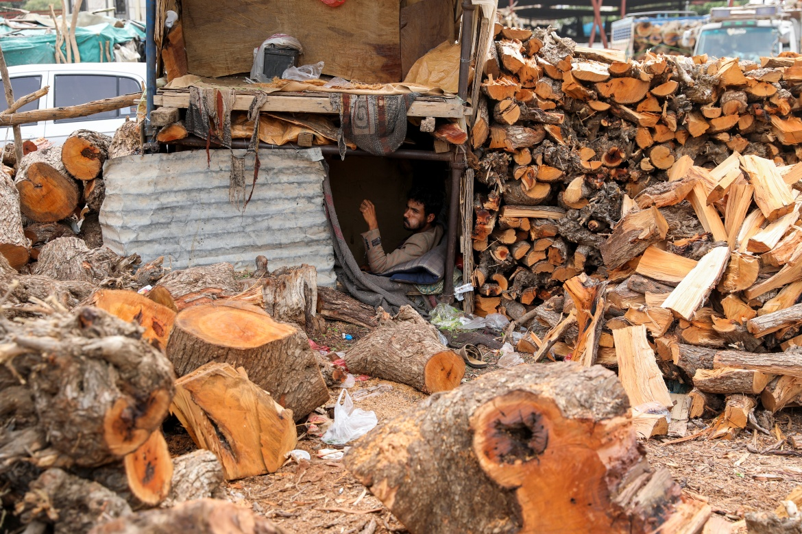 A vendor waits for customers at a firewood market in Sanaa. A five-tonne truck loaded with logs nets the equivalent of $300-$700 in Sanaa, depending on the wood and haulage distance. [Khaled Abdullah/Reuters]