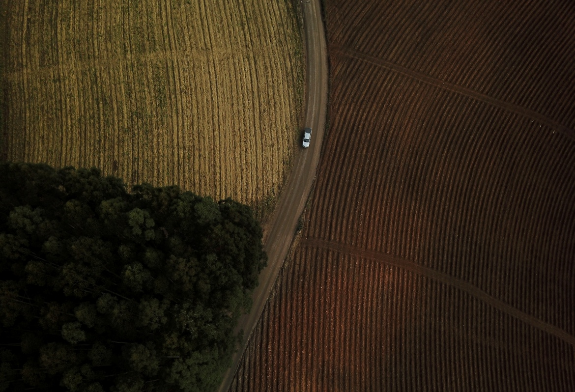 A car passing by a tobacco plantation on a land which the Xokleng Indigenous people claim as their territory in Vitor Meireles, Santa Catarina state. [Amanda Perobelli/Reuters]