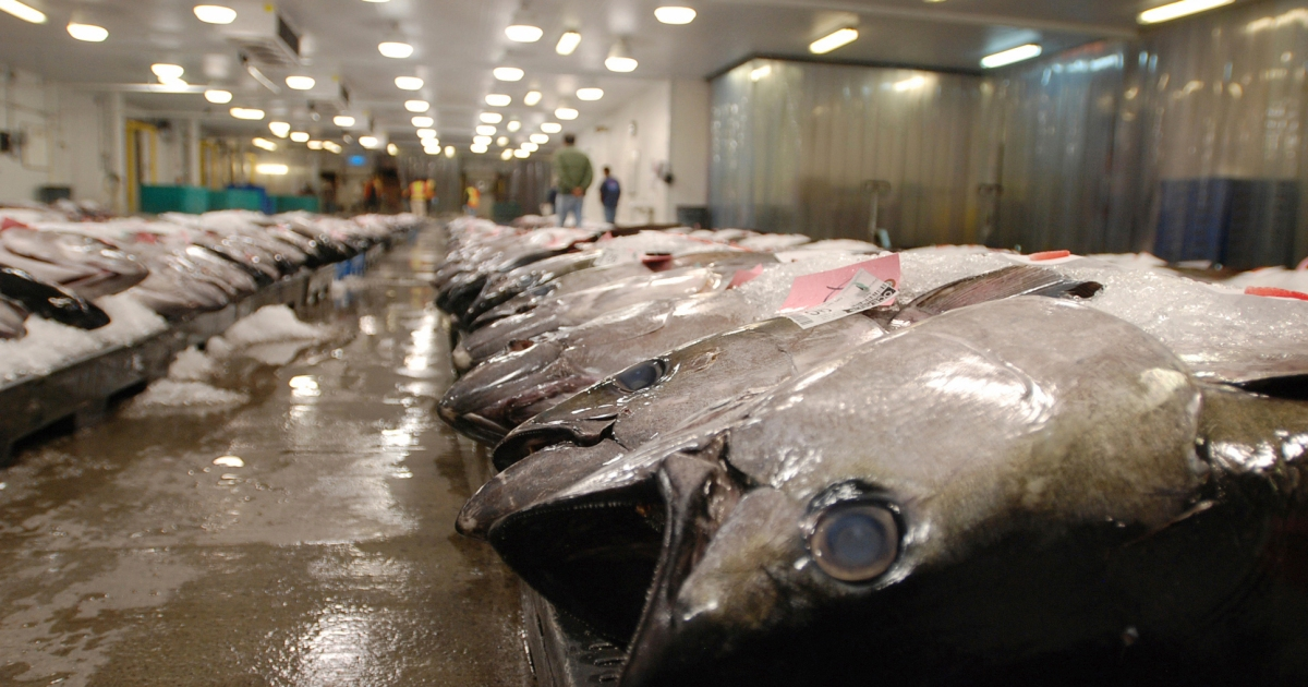 www.aljazeera.com: US blocks seafood from Fiji ship accused of enslaving crew