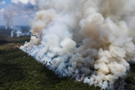 Smoke from burning vegetation rises in Brazilian Amazon rainforest near the Transamazonica national highway, in Humaita, Amazonas state, Brazil, September 8, 2021. Picture taken September 8, 2021 with a drone. REUTERS/Bruno Kelly